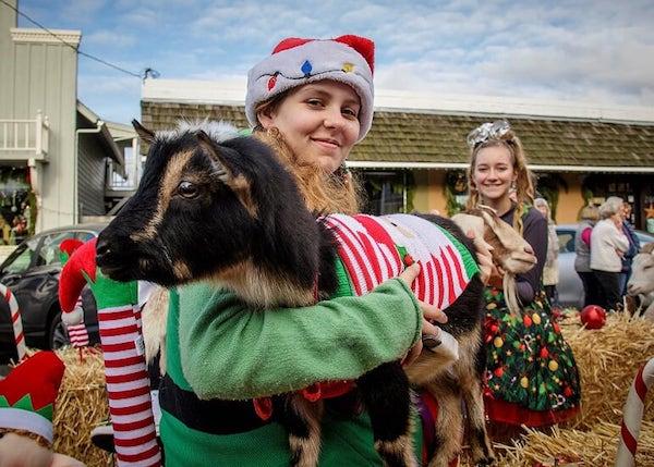 girl in santa hat with goat