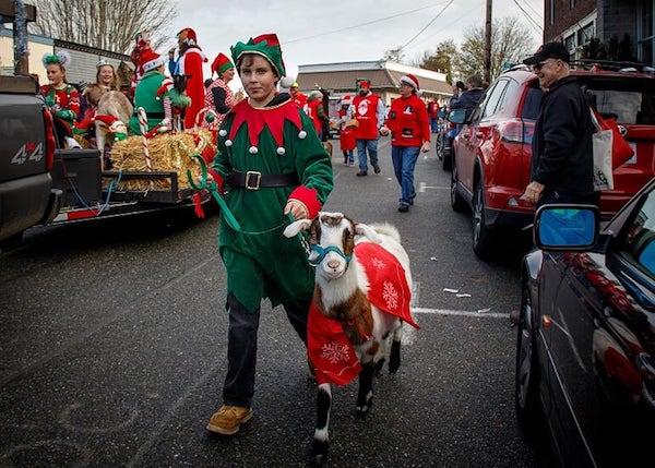 teen in elf costume walks goat