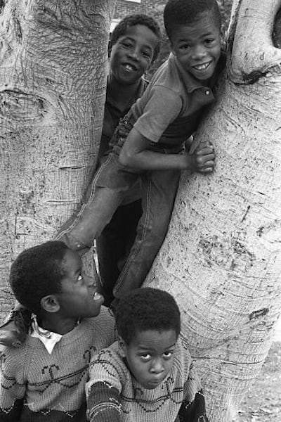 Four African American boys smiling while sitting in a tree